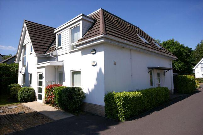 Thumbnail Flat to rent in Louise Court, Wareham Road, Wimborne, Dorset