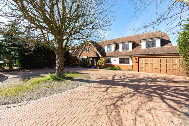 Thumbnail Detached house for sale in Homestead Road, Ramsden Bellhouse, Billericay, Essex