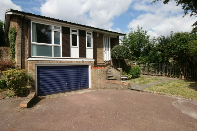 Thumbnail Bungalow to rent in Perifield, West Dulwich