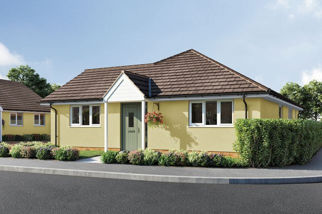 """Thumbnail Bungalow for sale in """"The Pippin"""" at Aller Mead Way, Williton, Taunton"""