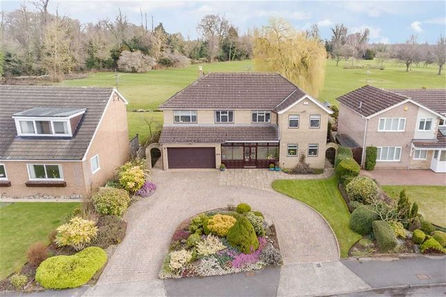 Thumbnail Detached house for sale in Grangeside, Darlington, County Durham