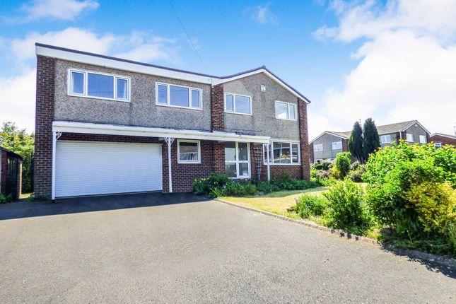 Thumbnail Semi-detached house to rent in Abbey Meadows, Morpeth