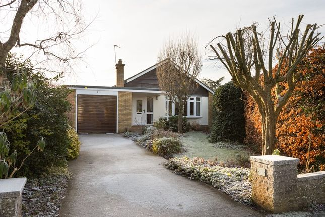 Thumbnail Bungalow for sale in Mulberry Court, Huntington, York