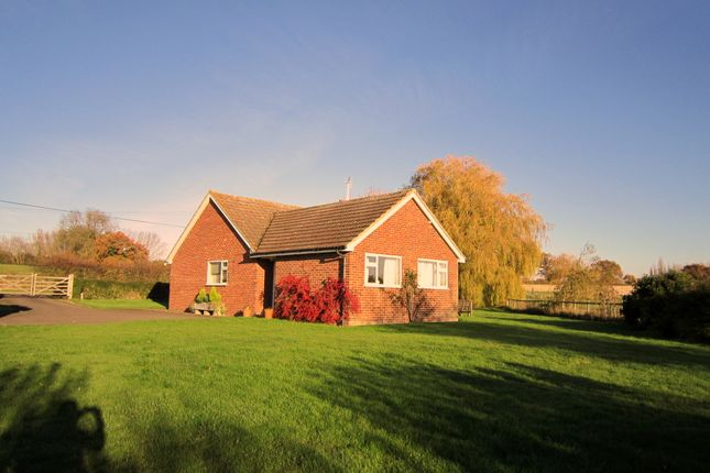 Thumbnail Detached bungalow to rent in Green Lane, Chart Sutton, Maidstone