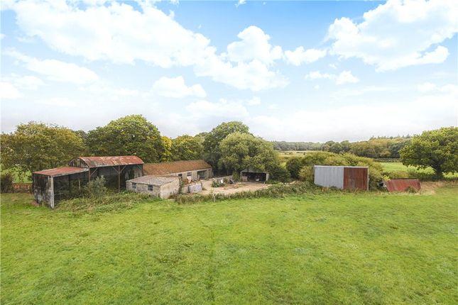 Thumbnail Land for sale in Seven Ash Common, Sherborne, Dorset