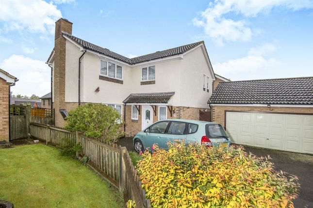 Thumbnail Detached house for sale in Fletcher Avenue, St. Leonards-On-Sea