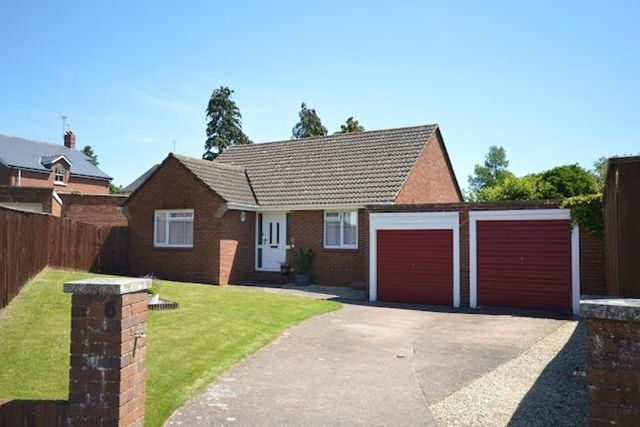 Thumbnail Bungalow to rent in Leighdene Close, St. Leonards, Exeter
