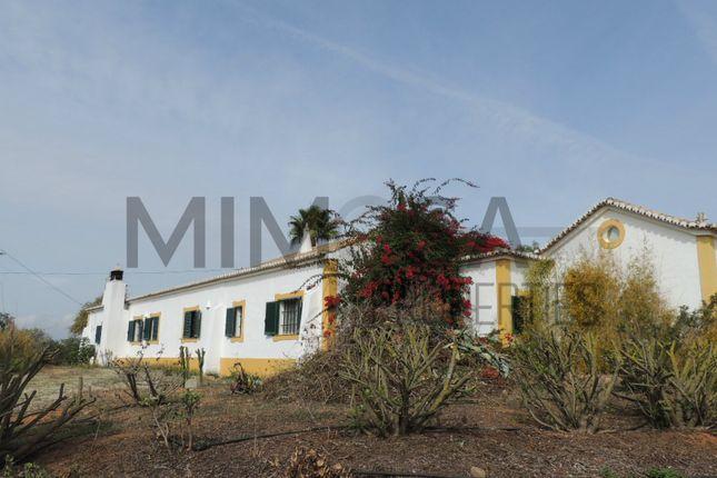 Thumbnail Land for sale in Porches, Porches, Lagoa Algarve