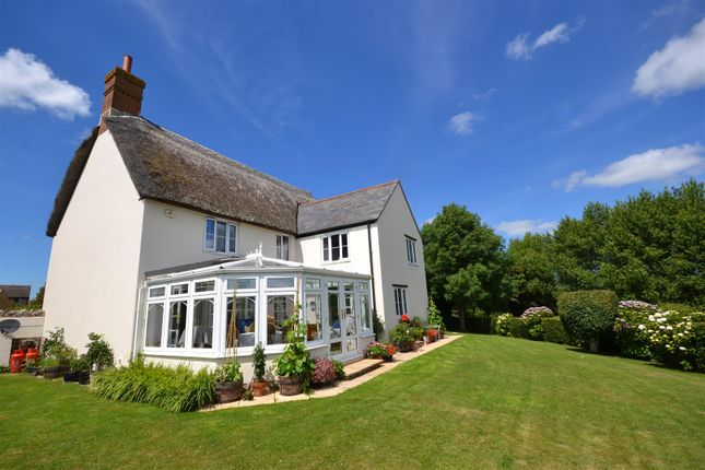 Thumbnail Detached house for sale in Pitchers, Salway Ash, Bridport