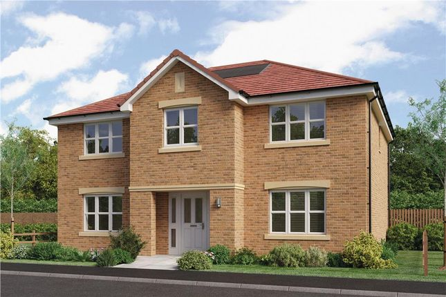 "Thumbnail Detached house for sale in ""Hopkirk"" at Brora Crescent, Hamilton"