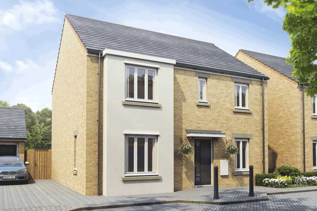 Thumbnail Detached house for sale in Holbrook Grove, Biggleswade