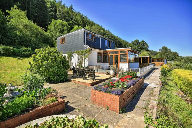 Thumbnail Detached house for sale in Trehafod, Pontypridd