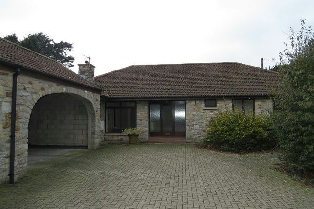 Thumbnail Detached bungalow to rent in Somerlea Court, Langford Road, Langford