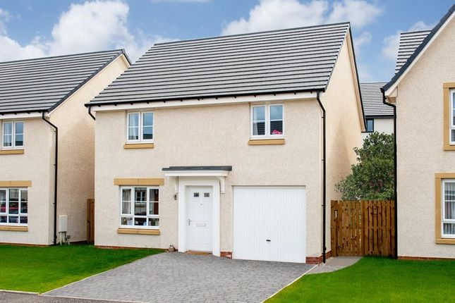 "Thumbnail Detached house for sale in ""Glenbuchat"" at South Larch Road, Dunfermline"