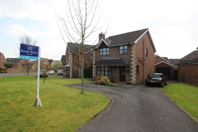 Thumbnail Detached house for sale in Ardvanagh Road, Conlig, Newtownards