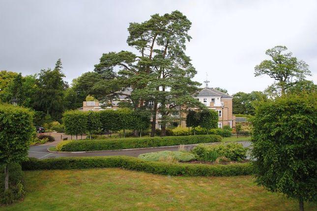 Gardens of Turnpike Court, Ardingly, Haywards Heath RH17