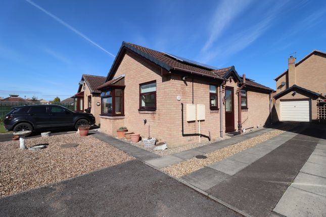 Thumbnail Detached bungalow for sale in Meadow Walk, Edenthorpe, Doncaster