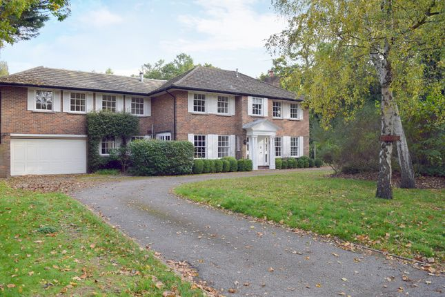 Thumbnail Detached house for sale in Patmore Lane, Burwood Park, Hersham, Walton-On-Thames