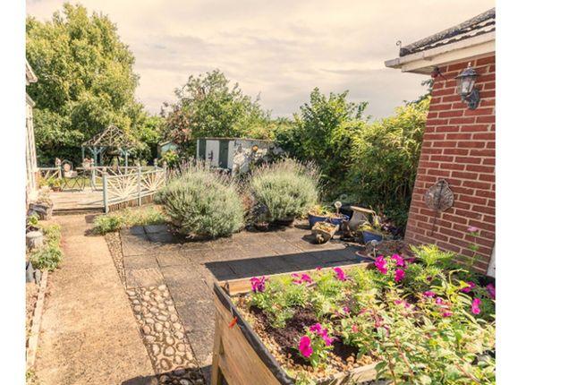 Garden of Marina Crescent, Salisbury SP4