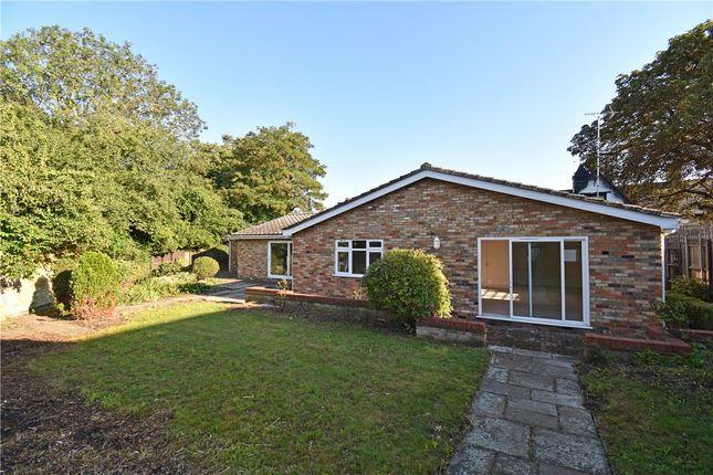 Thumbnail Bungalow to rent in High Street, Fen Ditton, Cambridge