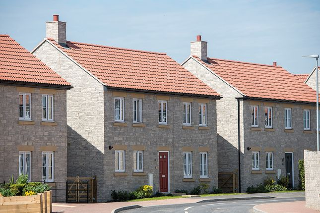 """Thumbnail Detached house for sale in """"The Montpellier"""" at Somerton Business Park, Bancombe Road, Somerton"""