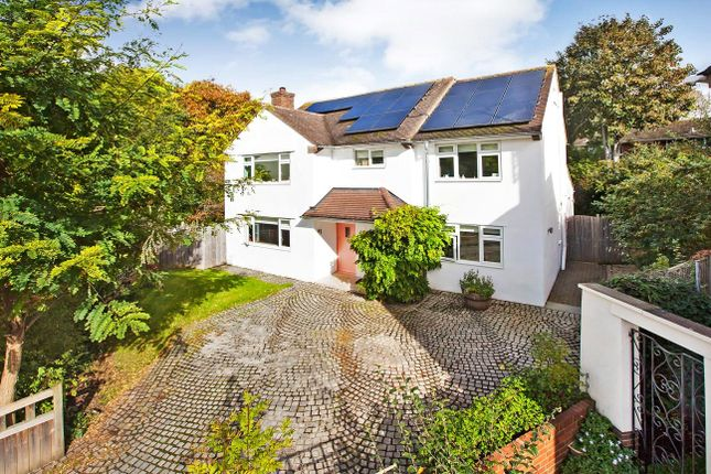 Thumbnail Detached house for sale in Monmouth Avenue, Topsham, Exeter