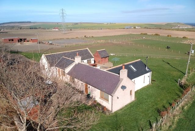 Thumbnail Bungalow for sale in Fordyce, Portsoy