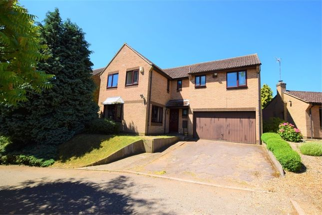 Thumbnail Detached house for sale in Ryefields, Spratton, Northampton