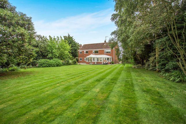Thumbnail Detached house for sale in Lynn Road, Great Bircham, King's Lynn, Norfolk