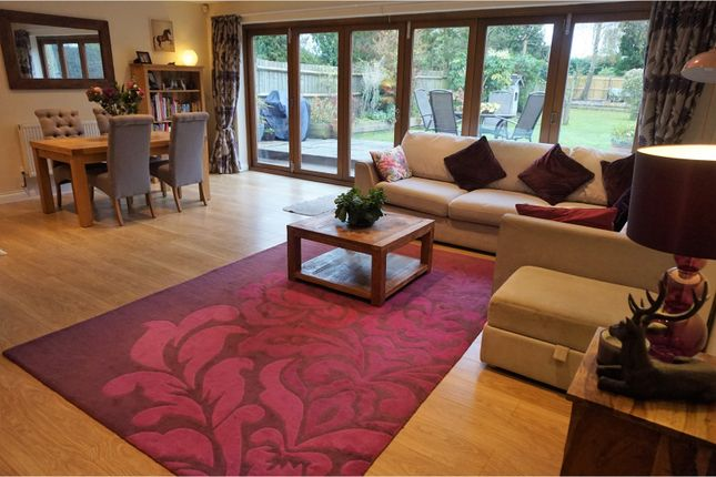 Thumbnail Detached bungalow for sale in Ashford Road, Hythe