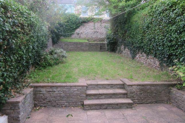 Garden of Cobden Road, Brighton BN2