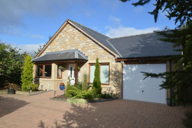 Thumbnail Detached bungalow for sale in Branxton, Cornhill-On-Tweed