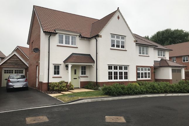 Thumbnail Property to rent in Reed Close, Chilton Trinity, Bridgwater