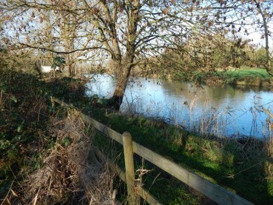 Thumbnail Land for sale in Staithe Road, Bungay, Suffolk