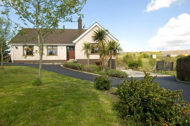 Thumbnail Detached house for sale in Magheralone Road, Ballynahinch