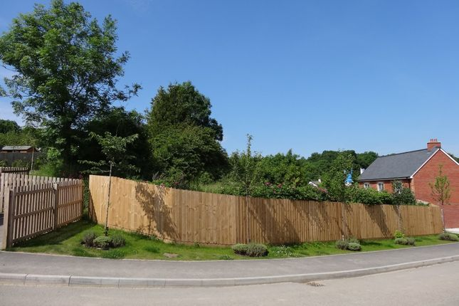 South Boundary of Development Site For 2 Dwellings, Chapel Street, Holsworthy EX22