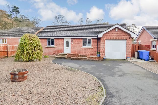 Thumbnail Bungalow for sale in Willow Park, Scots Gap, Morpeth