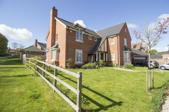 Thumbnail Detached house for sale in Mulberry Court, Hartley Wintney, Hook