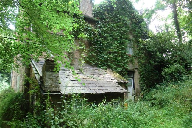 Thumbnail Semi-detached house for sale in Little Hereford, Shropshire