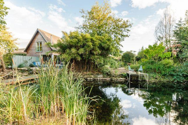 Thumbnail Detached house for sale in Cedar Road, Norwich, Norfolk