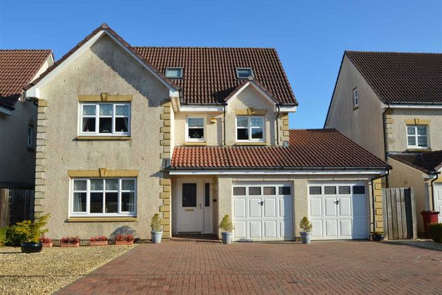 Thumbnail Detached house for sale in Pembury Crescent, Torhead Farm, Hamilton