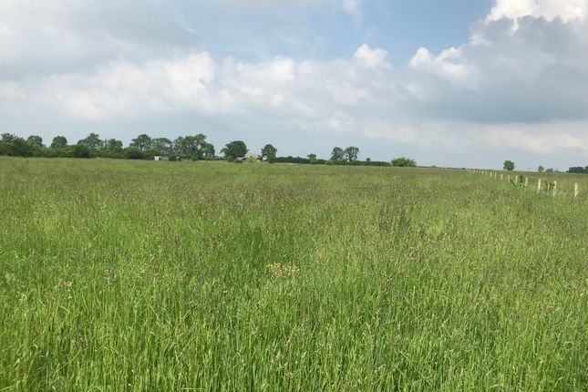 Thumbnail Farm for sale in Hargrave, Wellingborough