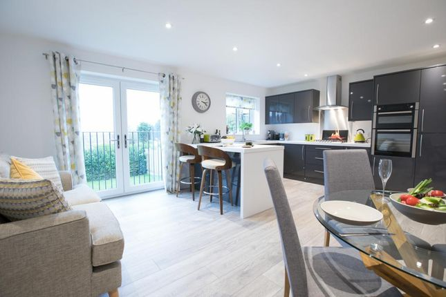Thumbnail Detached house for sale in Hallgate Lane, Pilsley, Chesterfield