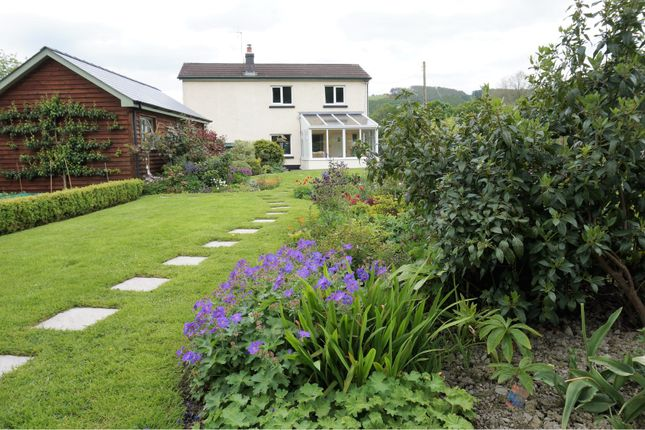 Thumbnail Detached house for sale in Llanilar, Aberystwyth