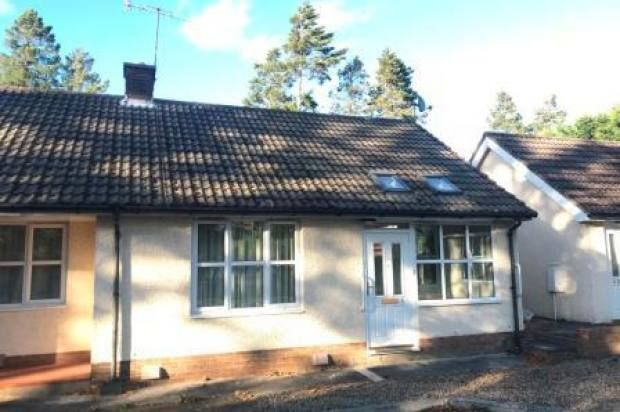 Thumbnail Bungalow to rent in 5 Dene Park, Hexham, Northumberland