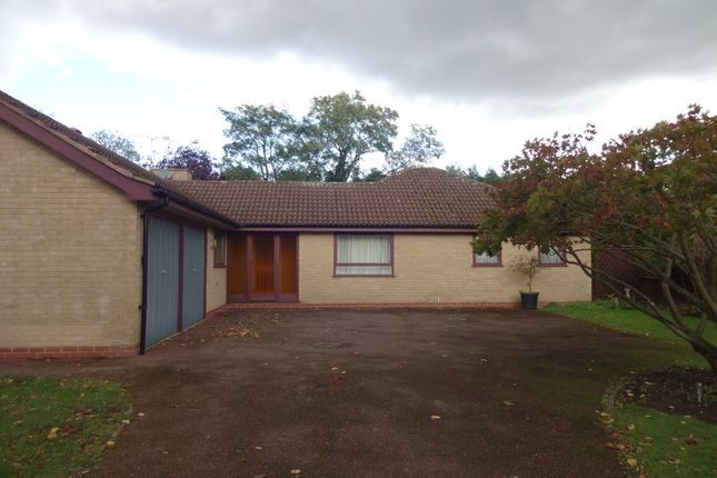 Thumbnail Detached bungalow to rent in The Yews, Leicester, Leicestershire