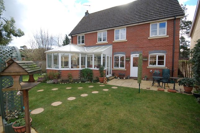 Thumbnail Detached house for sale in Brandon Road, Thetford
