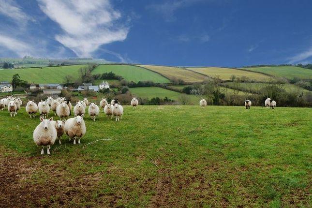 Thumbnail Land for sale in Bickington, Newton Abbot