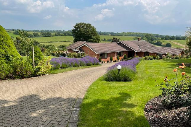 Thumbnail Bungalow for sale in Pitcot Lane, Owslebury, Winchester