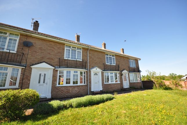 Thumbnail Terraced house to rent in The Dene, Uckfield